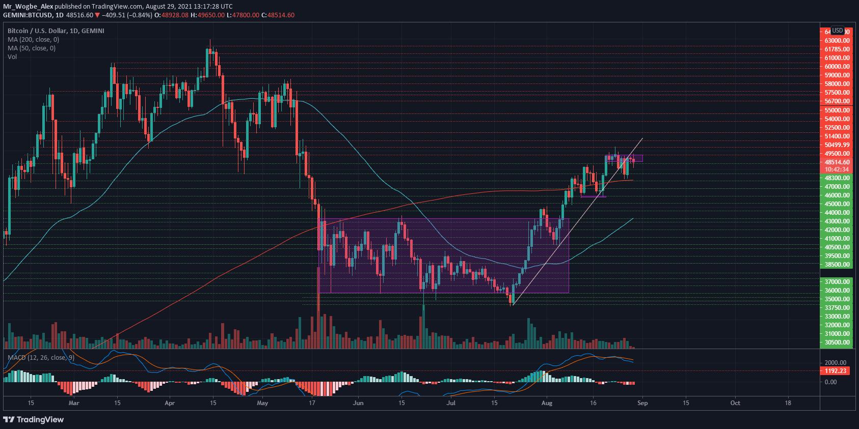 tradingview bitcoin ondulazione)